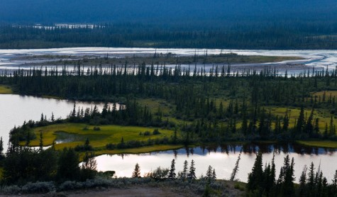 The evening sky is reflected in multiple channels of the Athabasca River in Jasper National Park