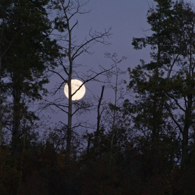 A full moon rises in a clear sky on the night of the autumnal equinox.